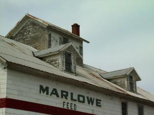 Marlowe Feed