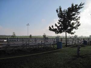 Fox Valley Saddle Association showgrounds at 7AM--promise of a nice day