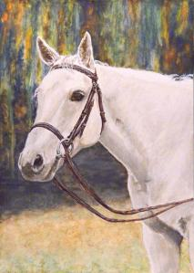 """Spur""--a special Christmas gift to the horse's owner from his trainer and competition rider. He's ridden both English and Western, and the English tack in the painting is a nod to his owner."