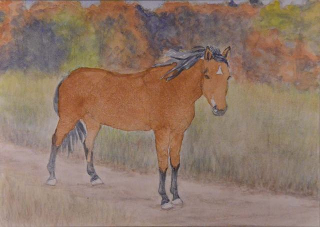 Here's the horse with just one juicy coat of watercolor on her.