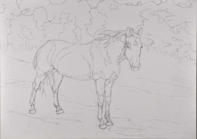 Pencil sketch on the Aquabord™