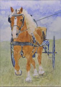 First of the horse and cart photos. Procrastinated because of complexity.