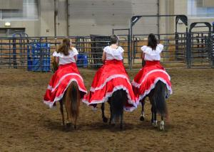 Paso Fino drill team. I don't care for these horses personally--their gaits are way too jiggy for me. But they are sort of cute.