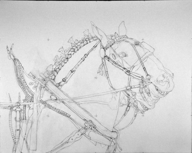 """Two draft show horses, ready to strut their stuff, but not necessarily too happy about it. I'm calling this painting """"Attitude"""" since they appear to be displaying quite a bit of it!"""