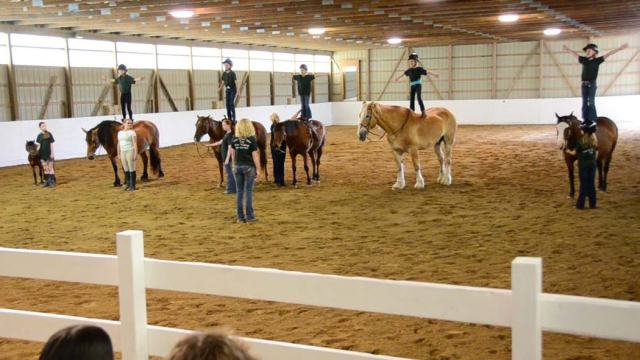 "All the kids stood up, yelled ""we have the best horses"", then dismounted by sliding off their rumps!"