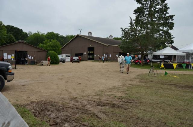 Main barn with indoor ring, and polo barn area on the showgrounds, complete with mud.