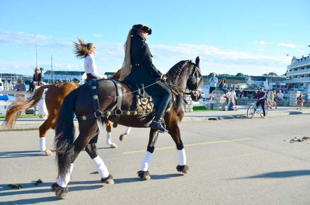 A little dressage bling, baroque style.