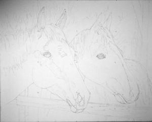 Pencil drawing combining Bella#1 and Junior #1