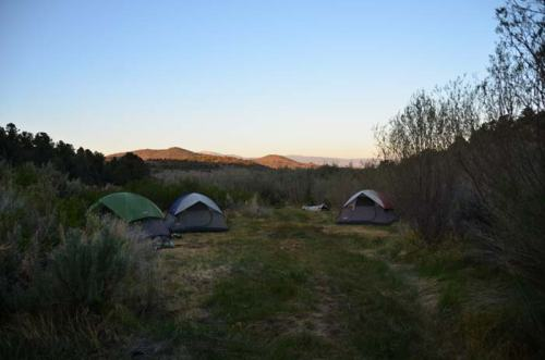 A section of the camp site. My tent was the green one on the left.