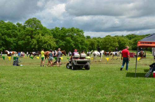 Warmup area gets crowded when you have 250 horses entered.