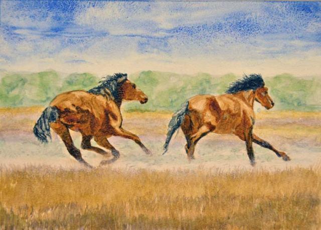 Two more bachelor stallions. Go, boys!