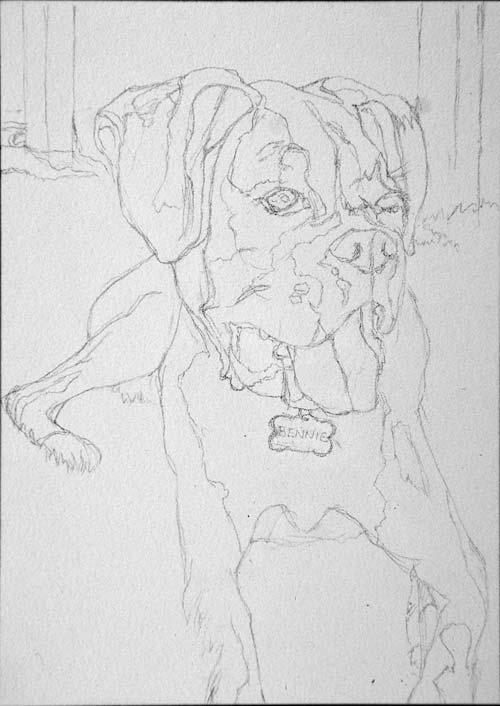 "Pencil drawing on Aquabord™ of ""Bennie"""