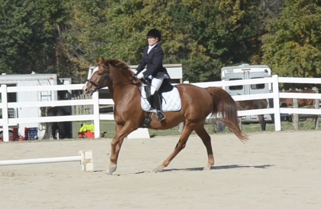 Uphill in the canter, with a nice reach under herself with the inside hind leg. Yes!!!