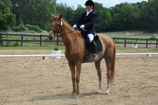 "Willow Tree dressage show. We were in the ""Silver"" class--horse and rider's ages had to add up to 80!"