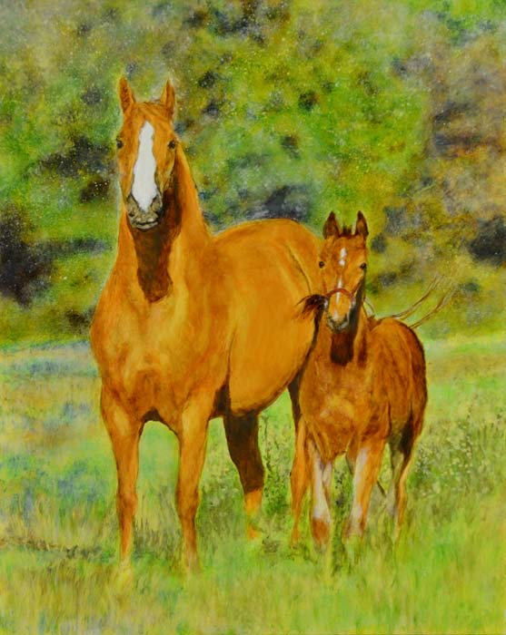 And here's the real thing, Windstorm and her colt, Reugan.