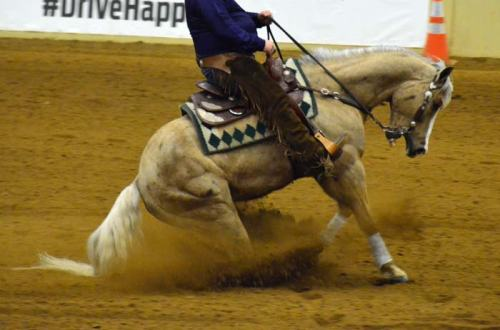Poor horse. Please don't ride like this.