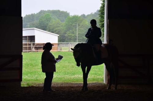 I love taking photos through barn doors. Just put up with me, OK?