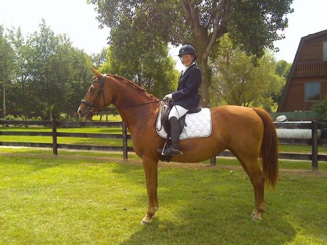 Here is Ms Charm doing the perfect square halt--which not surprisingly she declined to do when it was for the judges...