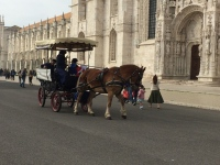 A horse of course. In front of the Jeronimos Monastery in Belem. It was founded in 1502, funded by the newly discovered spice trade. It now houses several museums.
