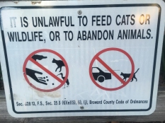 I get it with abandonment and feeding wildlife, but cats?